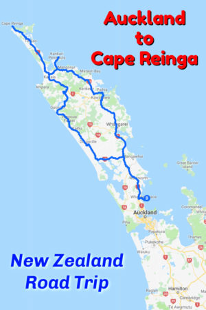 Auckland to Cape Reinga Road Trip