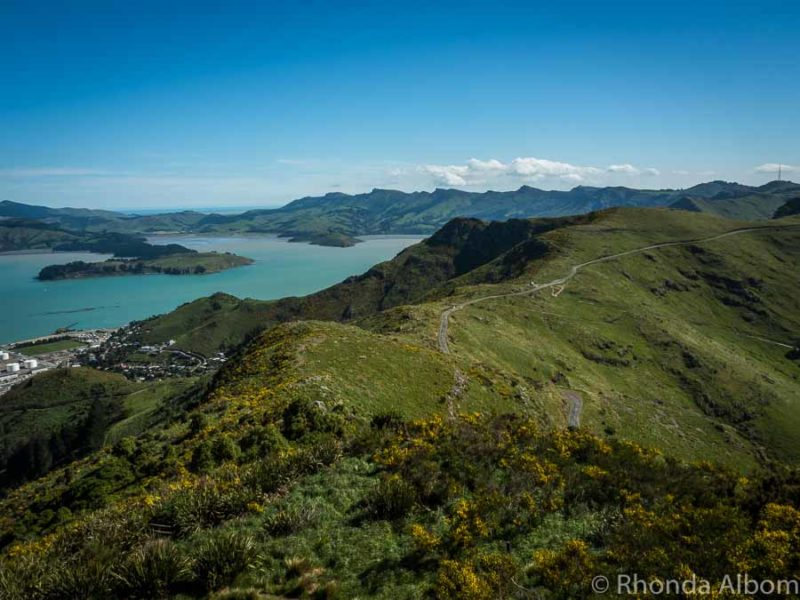 Crater rim trail with Quail Island in the background in Christchurch New Zealand