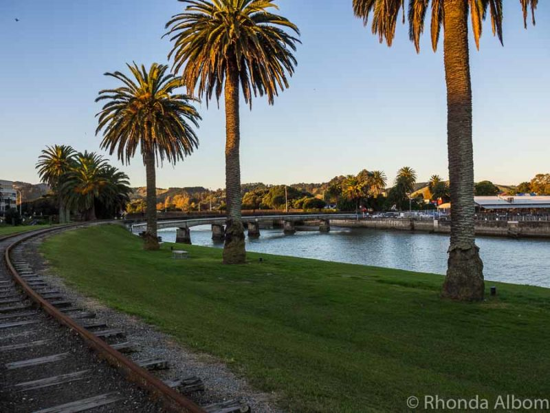 Old train tracks cross a palm tree lined river in New Zealand