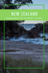 So many things to do in Tauranga, Mount Maunganui, in the Bay of Islands New Zealand