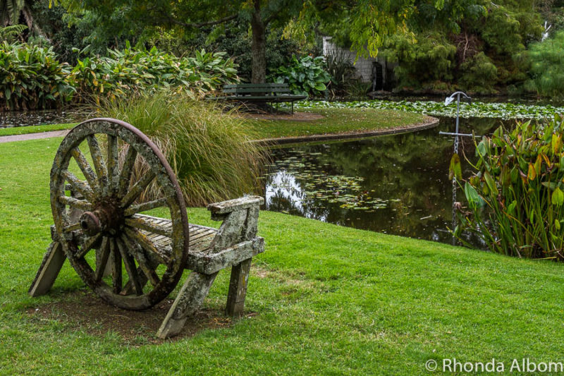 Ngatea Water Gardens: Nature with a Sense of Humour in NZ