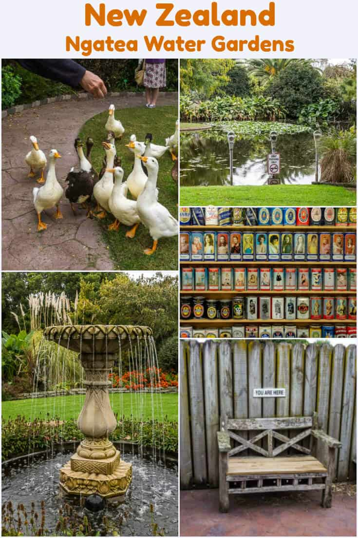 Nature, humour, and a massive Can Museum are all found at Ngatea Water Gardens in New Zealand. #Travel #NewZealand #watergardens #gardens #ngatea #ducks #birds #fountains #sodacans #beercans #humour #humor