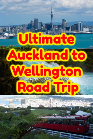 Auckland to Wellington Road Trip