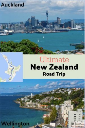 A guide to the ultimate New Zealand self drive itinerary and the best stops from Auckland to Wellington