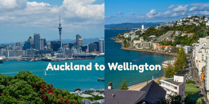 Enjoy an Auckland to Wellington Drive with These Stops