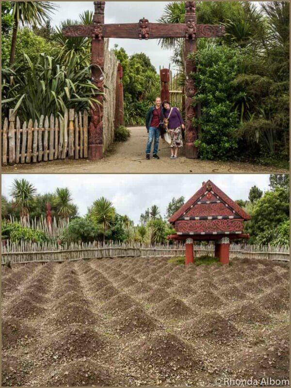 Te Parapara Garden, Hamilton NZ Gardens