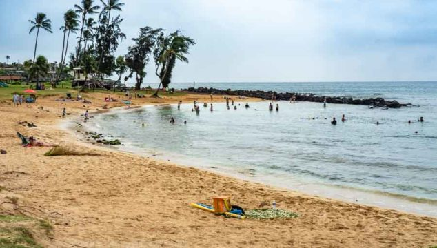 Kauai Excursions: Highlights of Kauai, Hawaii in a Day