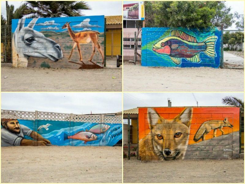 Street Art in Punta de Choros, Chile
