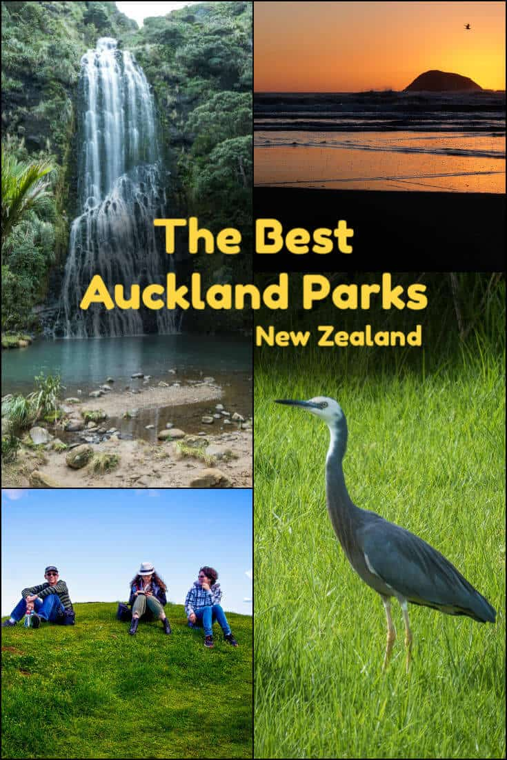Auckland parks exemplify the clean, green reputation of New Zealand. Hiking, picnics, beaches, livestock: this list has the best parks in Auckland. #travel #NewZealand #Auckland #parks #beach #trees