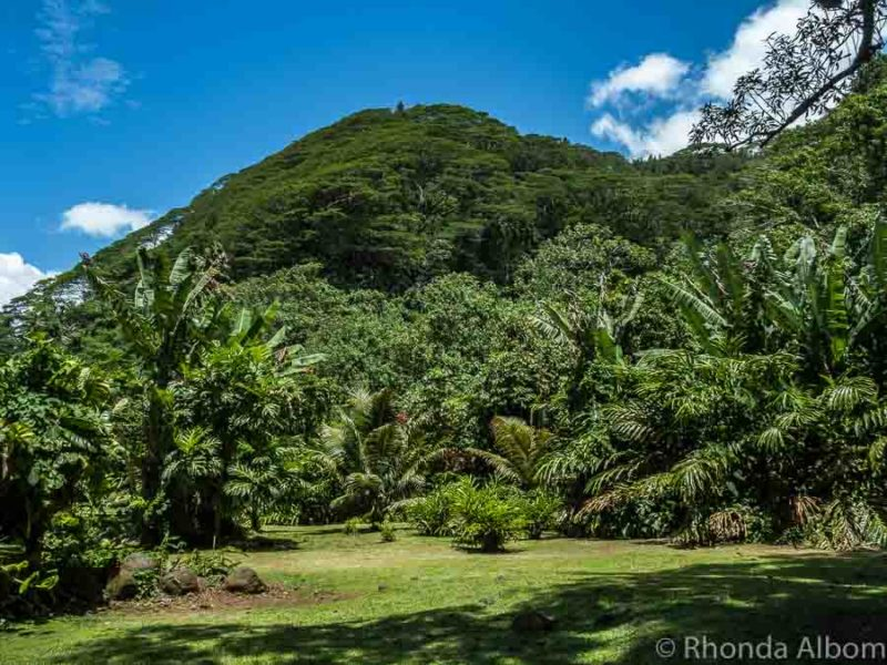 Cruising to Tahiti: Things to do in a day (besides the beach)