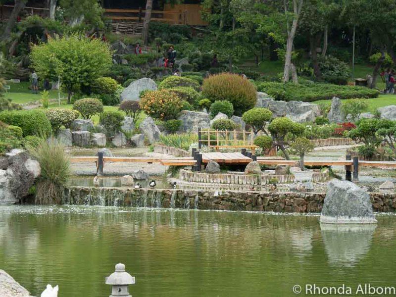 Japanese Gardens in La Serena Chile