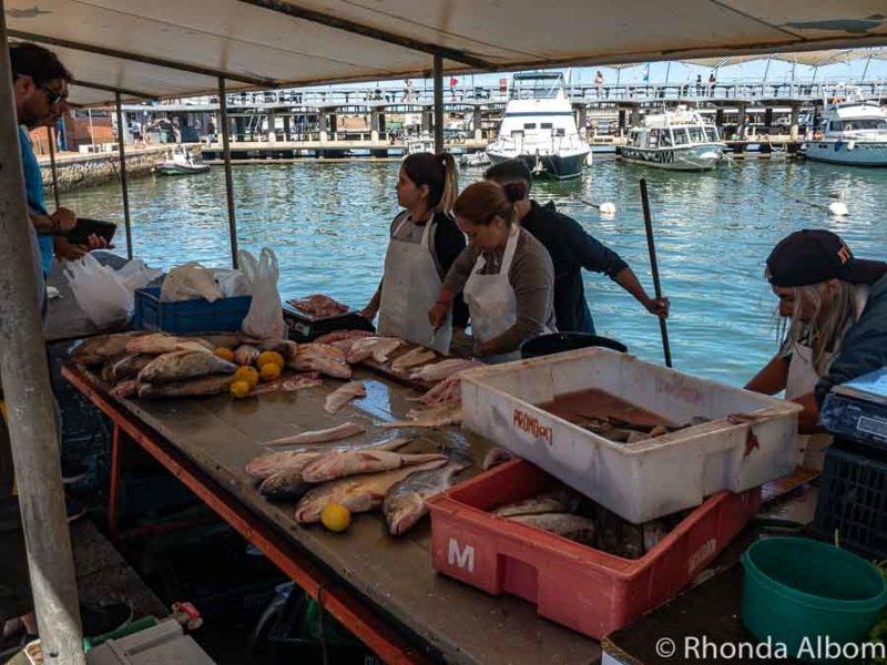 The fish market at Punta del Este port