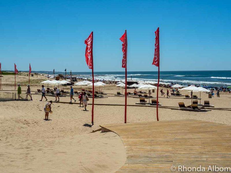 Playa Brava beach of Punta del Este Uruguay