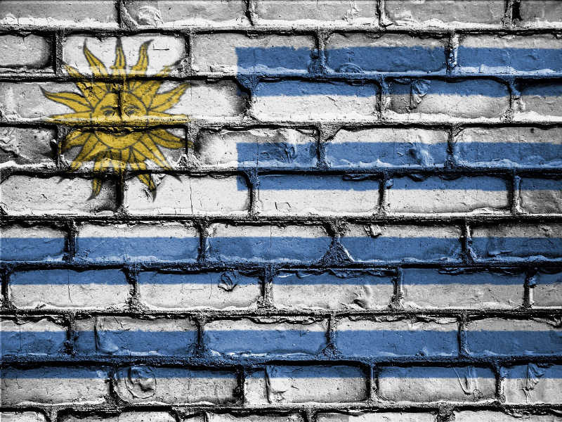 Uruguayan flag painted on a brick wall, one of many cool examples of street art of Uruguay.