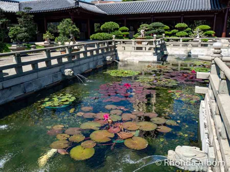 Nan Lian Garden, sightseeing in Hong Kong