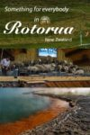 Zorb downhill ball rolling, Agrodome sheep show, and the Champagne Pool at Waiotapu in Rotorua New Zealand