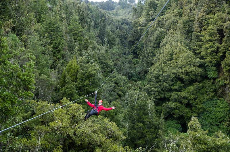 Man on longest zip line tour. Photo supplied by Rotorua Canopy Tours