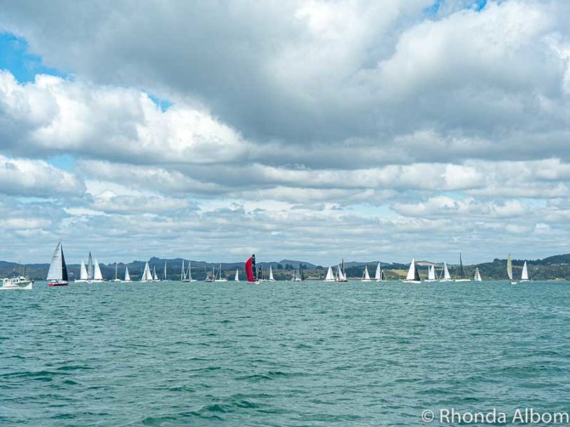 Yacht race  in the Bay of Islands, New Zealand