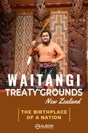 A Maori warrior performer during a cultural show at the Waitangi Treaty Grounds New Zealand