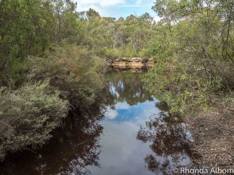 Reflection of the trees and clouds in the Platypus waterhole, but no animals today.