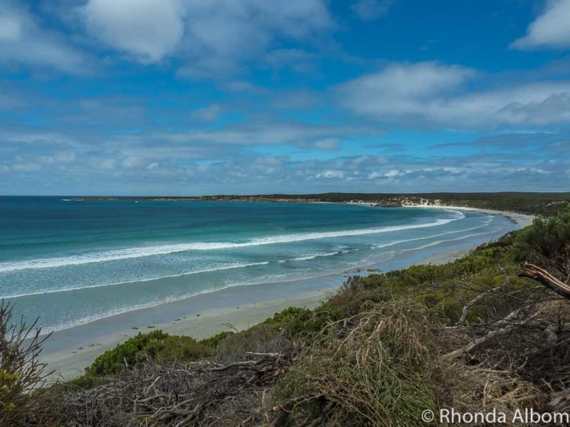 Overlooking the white sand and turquoise waters of Vivonne Bay on Kangaroo Island, South Australia
