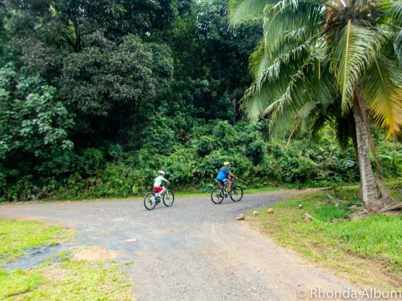 A father and son on bicycles in the backroads on Rarotonga