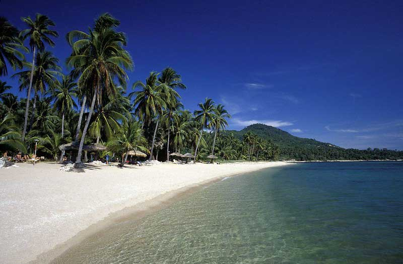 Palm trees and white sand of Chaweng Beach on the island of Koh Samui