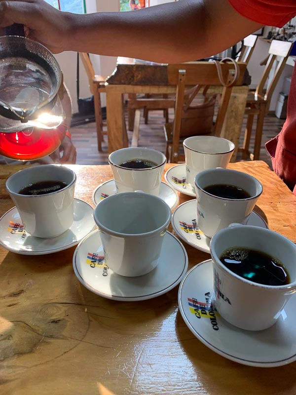 Coffee cups on a table at a coffee tasting in Salento, Colombia