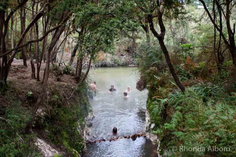 Hot & Cold Pools near Wai-O-Tapu Thermal Wonderland in Rotorua, New Zealand