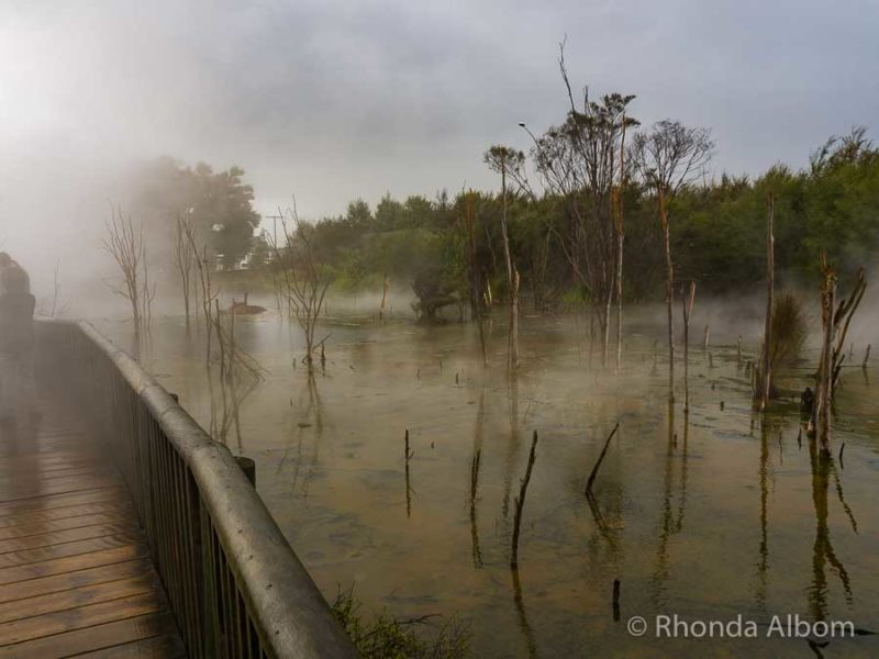 View of the geothermal activity in Kuirau Park, one of the free attractions in Rotorua New Zealand