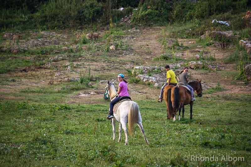 Riding horses is one of the things one might do on a farm stay as an alternative to hotels