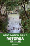 Hot and cold pools near Waiotapu in Rotorua New Zealand