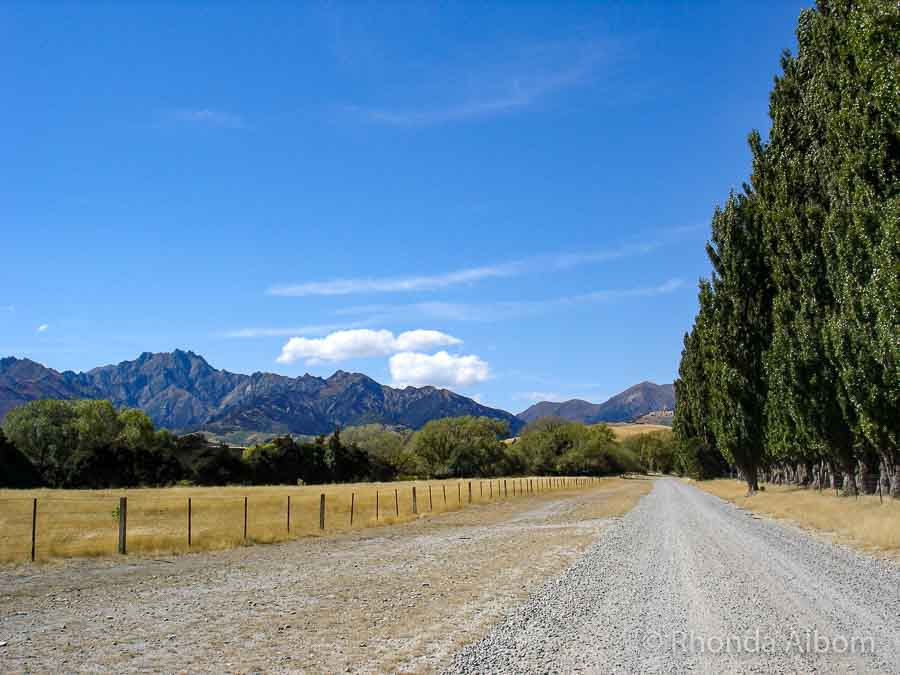 New Zealand Road Trips: Itineraries for North or South Island Adventures