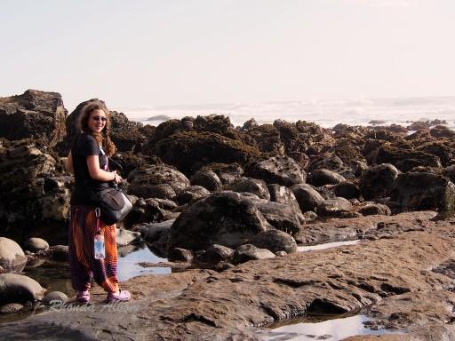 Muriwai Beach at King Low Tide