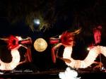 Photo of the Vivid Auckland Lantern Festival