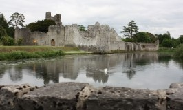 castle and swan