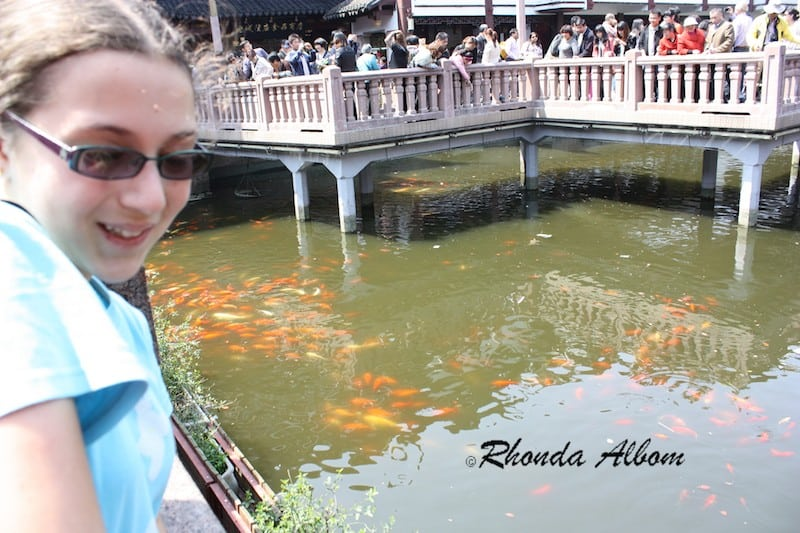 Crowded Zig Zag Bridge at Yu Yuan Garden in Shanghia, China. Originally built in 1577 during the Ming Dynasty, it fell into disrepair over time. The gardens were renovated in 1949.