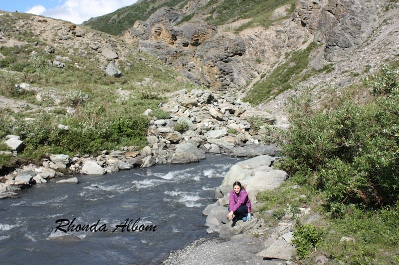Hiking Savage River Trail in Denali National Park, Alaska, USA