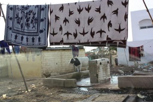On the backroads in Casablanca