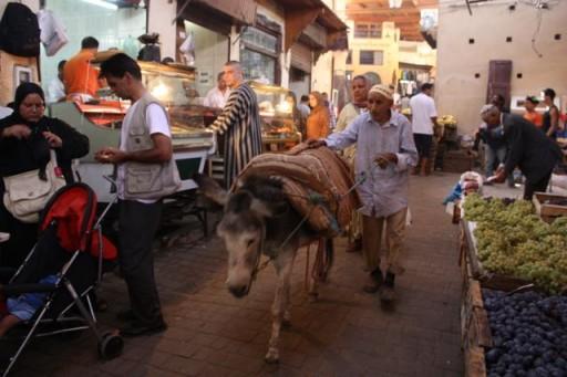 Medina in Fes