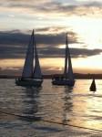 Ladies Yacht Racing in New Zealand