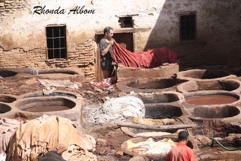 Tanning a Hide in Chouara Tannery in Fez, Morocco
