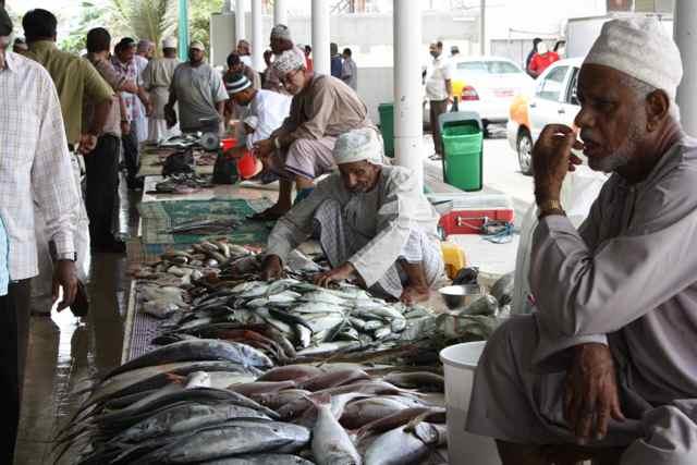 Fish Market in Muscat Oman