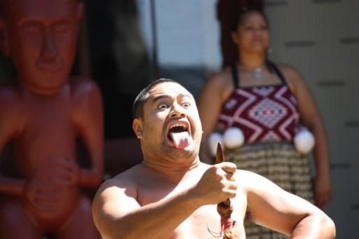Waitangi Treaty Grounds New Zealand