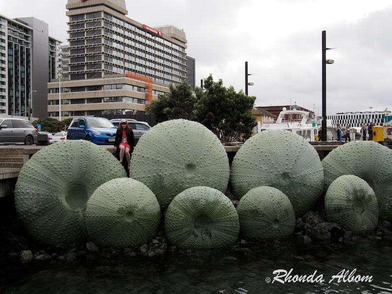 Giant Sea Urchin on Wellington Waterfront