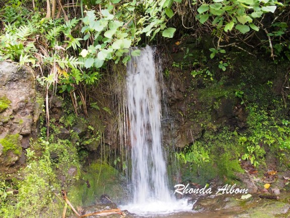 Waterfall where people stop to bath on South coast of Upolu, Samoa